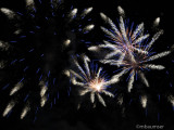 Disney EPCOT fireworks 1735