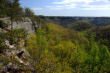 Red River Gorge Overlook