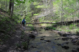 Hiking along a babbling creek