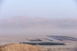 Desert agriculture in the Arava desert