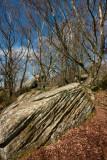 Brimham Rocks IMG_4818.jpg