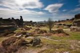 Brimham Rocks IMG_4832.jpg