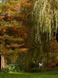 Thwaite Hall Gardens -6367.jpg