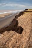 Withernsea cliffs IMG_9434.jpg