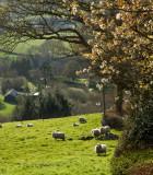 Merthyr Cynog Wales IMG_0522.jpg