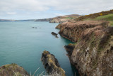 Pembrokeshire coast IMG_0279.jpg