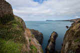 Pembrokeshire coast Fishguard IMG_0298.jpg