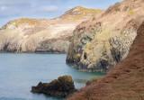 Pembrokeshire coast IMG_0326.jpg