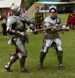 Knights in Battle IMG_1059.jpg