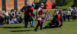 Knights in Battle IMG_1414.jpg