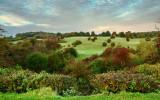 Beverley Westwood IMG_6065-2.jpg