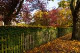 Beverley IMG_6482.jpg