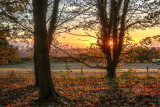 Autumn sunrise IMG_7217.jpg