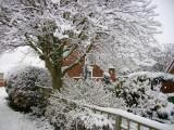 Cottingham IMGP0074_2.jpg
