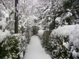Cottingham IMGP0083_2.jpg