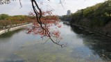 Osaka Castle - East Outer Moat