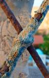 Cross Knitting