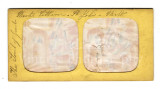 04 French Tissue Stereoviews.jpg