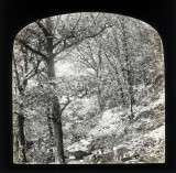 02 Landscape Magic Lantern Slide.jpg