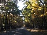 Lawrenceburg, TN