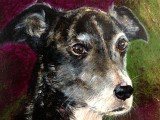In memory of Max, painted by my friend Carol T in 2012