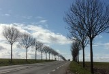 Halfway to Hesdin
