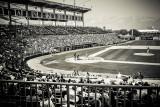 The Tampa Chronicles ~ Spring Baseball 2014