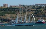 Tall Ships Races - Creoula