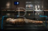 Múmia de Horsukhet