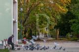 O Parque D. Carlos em 29 de outubro de 2013