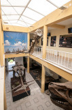 Pavilhão da Paleontologia