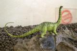 Brachiosauros