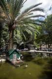 O Jardim de Campo de Ourique