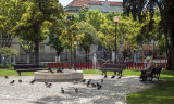 Jardim Henrique Lopes de Mendonça