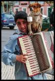 The Boy, the Dog and the Accordion (Caldas da Rainha)