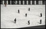 The Circle of Life (Paris)