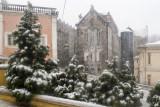 Neve nas Caldas