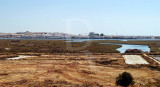 A Reserva do Sapal e Ayamonte