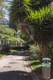 Parque Delfim de Guimarães (IM)