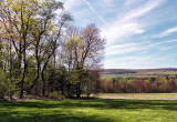 Orchard Country (Adams county PA)
