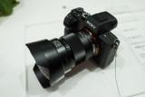 Sony • FE 28mm f/2  & 16 FishEye