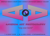 Anserum Art Ad