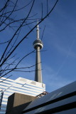 Queen St W and CN tower