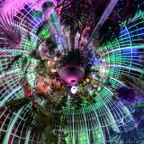 _JC74954_Botanical_Gardens_LP_lights_01.jpg