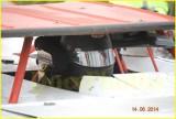 Willamette Speedway June 14 2014