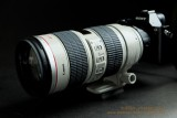 Canon 70-200mm f/2.8 ISObviously an overkill!