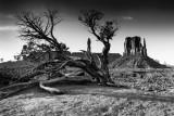 Monument_Valley-1.jpg