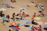 Busy Beach Scene