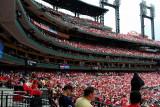 Cardinals4-23-06-26.jpg