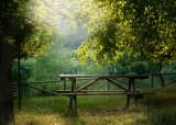 130729mesa-picnic3454wr.jpg